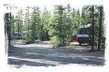 Wooded site at Pioneer RV Park & Campground - Whitehorse, Yukon